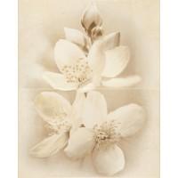 Декор настенный Cersanit Diana цветок 50x40 (компл 2 шт)
