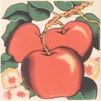 Декор настенный Atem Orly Apple 100x100 (шт)