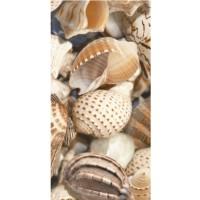 Декор настенный Golden Tile Sea Breeze Shells Е11421 30x60 (шт)