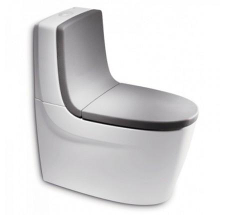 Сиденье с крышкой для унитаза Roca Khroma 801652F1T soft-close + спинка 80165AF1T