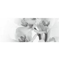 Настенный декор Керамин Элегия 7 тип 2 50x20 (шт)