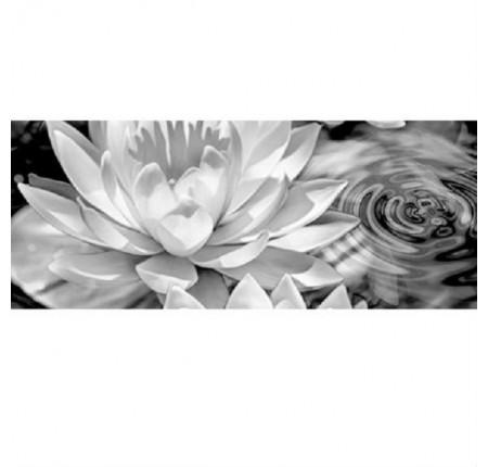 Настенный декор Керамин Элегия 1 тип 2 50x20 (шт)