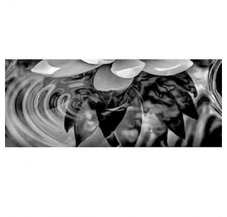 Настенный декор Керамин Элегия 1 тип 4 50x20 (шт)