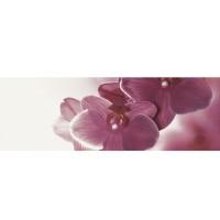 Декор настенный Paradyz Abrila Inserto Kwiat B 20x60 (шт)